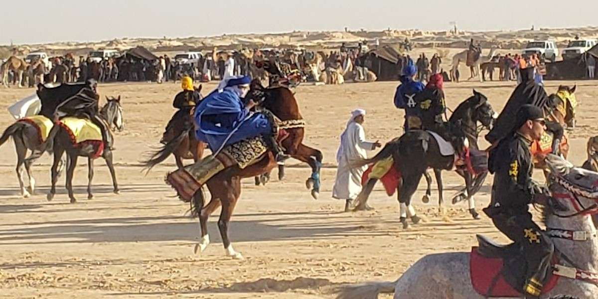 Berber Horsemanship at the International Festival of the Sahara